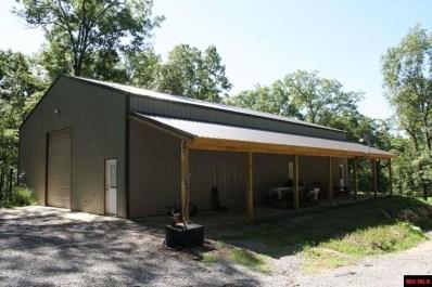 Eagle Point Lane, Salesville, AR 72653 - #: 109477