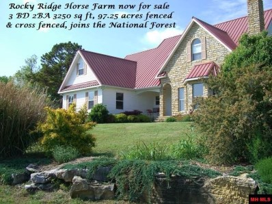 32270 Hwy 263, Mountain View, AR 72617 - #: 113667