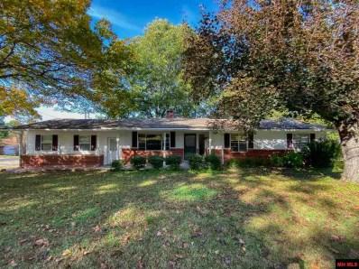 211 Red Bud Lane, Mountain Home, AR 72653 - #: 114536