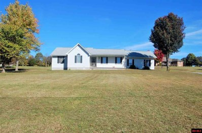 94 Leslie Lane, Mountain Home, AR 72653 - #: 115510