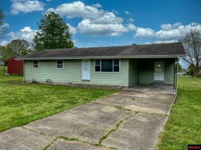 213 Houser, Gassville, AR 72635 - #: 115697