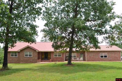 382 Cr 510, Midway, AR 72651 - #: 117128