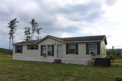 2249 Mc 5036, Yellville, AR 72687 - #: 117225