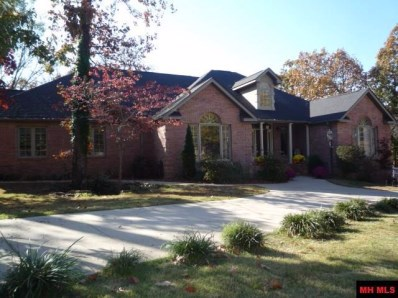 1800 Brentwood Drive, Mountain Home, AR 72653 - #: 118231