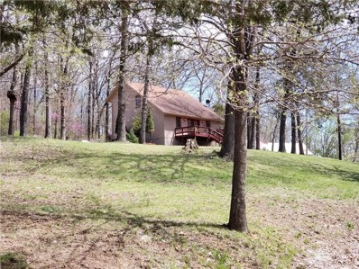 95 County Road 993, Green Forest, AR 72638 - #: 1110340