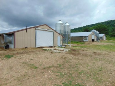 3577 County Road 906, Green Forest, AR 72638 - #: 1117376