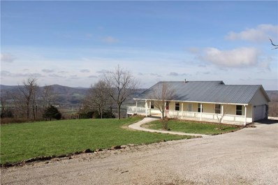 647 County Road 905, Green Forest, AR 72638 - #: 1118206