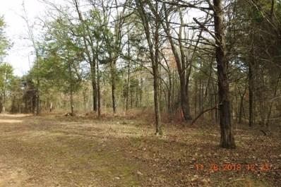 40AC Burchfield Mountain Trail, Cedarville, AR 72932 - #: 1161954