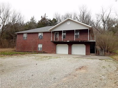429 County Road 902, Green Forest, AR 72638 - #: 1174479