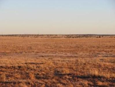 Lot 18, Winslow, AZ 86047 - #: 70693
