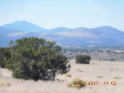 20670 S Horn Road, Flagstaff, AZ 86004 - #: 180207
