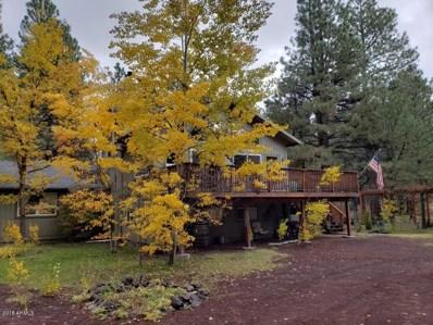 707 Western Lane, Mormon Lake, AZ 86038 - #: 5789109