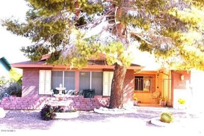11439 S Iroquois Drive, Phoenix, AZ 85044 - #: 5792926