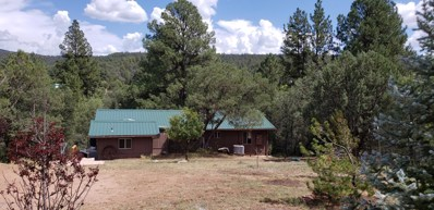125 S Creekside Lane, Young, AZ 85554 - #: 5971751