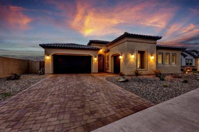 3010 E Desert Lane, Phoenix, AZ 85042 - #: 6027260