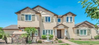 2804 E Constance Way, Phoenix, AZ 85042 - #: 6031701