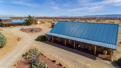 13688 S Morgan Road, Pearce, AZ 85625 - #: 21812011