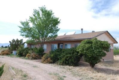 3363 N Wadsworth Road, Willcox, AZ 85643 - #: 21816036