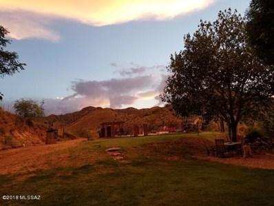 735 W Eagle Wings Road, Pearce, AZ 85625 - #: 21817738