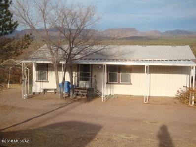 201 N Catalina Avenue, Mammoth, AZ 85618 - #: 21824050