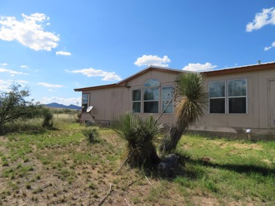 4697 E Dragoon Road, Dragoon, AZ 85609 - #: 21825123
