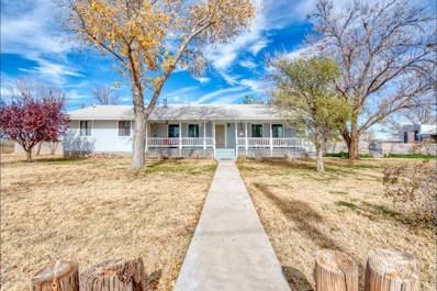 2475 N Fort Grant Road, Willcox, AZ 85643 - #: 21832257