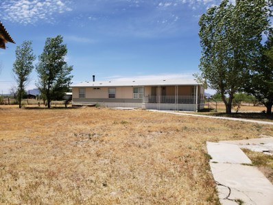 2887 W Ten Gallon Trail, Willcox, AZ 85643 - #: 21913337