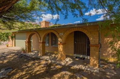 3687 E Esperero Canyon Place, Tucson, AZ 85718 - #: 21923322