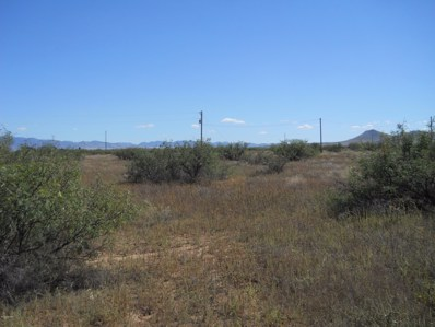 13272 S Ash Creek Road, Pearce, AZ 85625 - #: 21929901