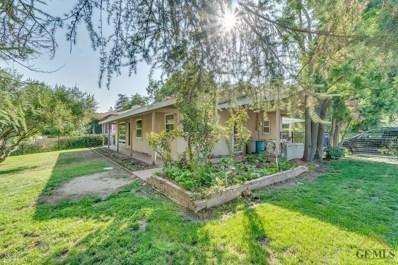 2880 Skyline Boulevard, Bakersfield, CA 93305 - #: 21810335