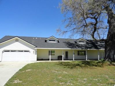 17141 Bold Venture Drive, Tehachapi, CA 93561 - #: 21811891
