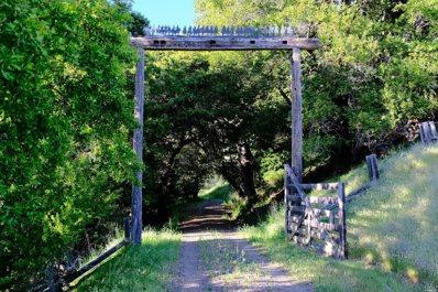 16151 Deer Meadows Road, Boonville, CA 95415 - #: 21725719