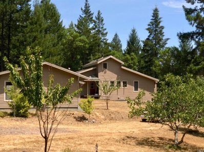 9135 Raven S Pike Road, Boonville, CA 95415 - #: 21819062