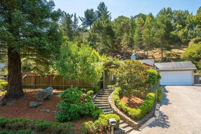 359 Marin Avenue, Mill Valley, CA 94941 - #: 21820320