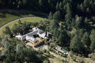 232 N Fork Crystal Springs Road, St. Helena, CA 94574 - #: 21820560