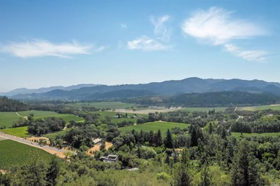 3800 Silverado Trail NORTH, St. Helena, CA 94574 - #: 21824001