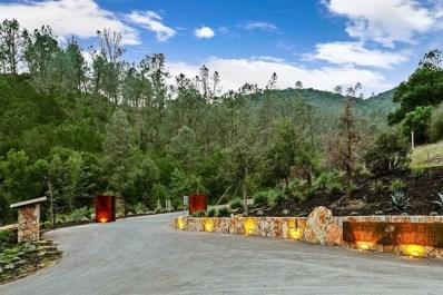 100 Reserve Road, St. Helena, CA 94574 - #: 21824930