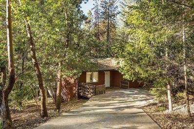 16655 Mountain View Drive, Cobb, CA 95426 - #: 21828993