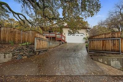12738 Oakgrove Avenue, Clearlake Oaks, CA 95423 - #: 21830244