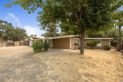 14320 Walnut Avenue, Clearlake, CA 95422 - #: 21830347