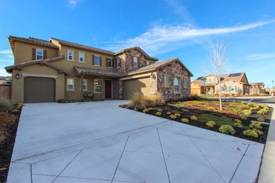 1067 Green Leaf Court, Vacaville, CA 95688 - #: 21831358