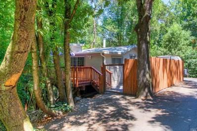 10306 Old River Road, Forestville, CA 95436 - #: 21918997
