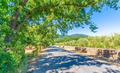 1353 Bella Oaks Lane, Rutherford, CA 94558 - #: 21920296