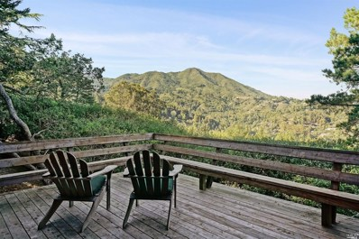 388 Edgewood Avenue, Mill Valley, CA 94941 - #: 22000771
