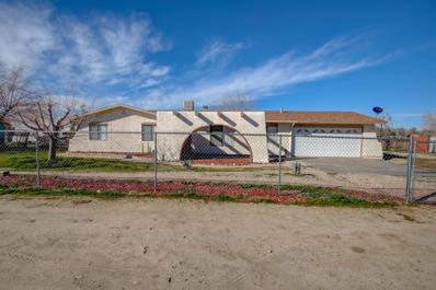 9317 E Ave T14, Littlerock, CA 93543 - #: 19003392