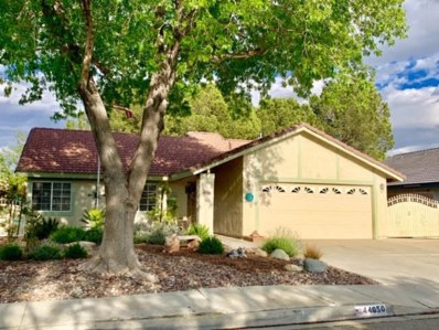 44050 Shad Street, Lancaster, CA 93536 - #: 19004383