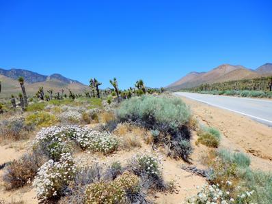 Isabella Walker Pass Road, Inyokern, CA 93527 - #: 19007287