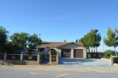 2894 Delmar Avenue, Mojave, CA 93501 - #: 19008831