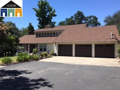 8805 Oak View Ct, Oakdale, CA 95361 - #: 40830340