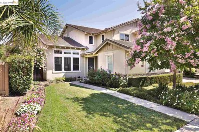 1003 Meadow Brook Dr, Brentwood, CA 94513 - #: 40832351